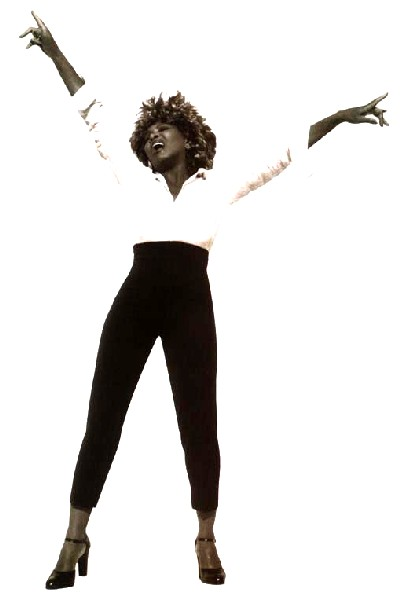Tina Turner: That Survivor Aunt Of Yours